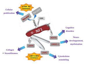 neurofibromatose_2.jpg