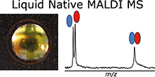 CBM researchers have created the first method for detecting non-covalent complexes of biomolecules by MALDI mass spectrometry based on liquid deposits